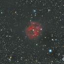 IC-5146 the Cocoon Nebula,                                Robert Miller