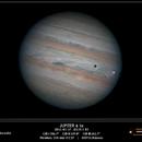 Jupiter and transit of Io,                                Conrado Serodio
