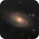 M81 Bodes Galaxie,                                Sascha Schueller