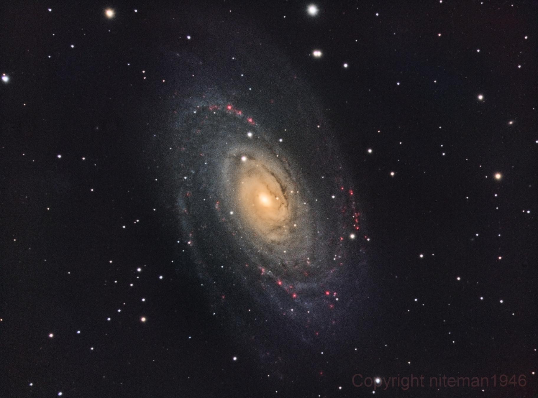 M81 Bode's Galaxy,                                niteman1946