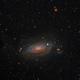Sunflower Galaxy -- Messier 63,                                Miles Zhou