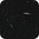 NGC 4631 Whale Galaxy & NGC 4656 Hockey Stick,                                Roland Schliessus