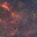 IC 1311 - Sadr Region SHO,                                Sigga