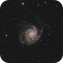 M101 with crop.  RASA   4-17-2020,                                Mo