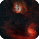 Flaming Star and Tadpole Nebulae,                                Roger Nichol