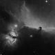 Horsehead - Flame Region (Mono),                                David Andra