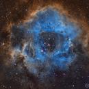 Rosette Nebula (NGC 2237),                                Temu Nana