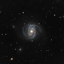 M100 - The Blowdryer Galaxy,                                Michael J. Mangieri