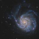 M101,                                Bart Delsaert