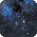 The Tadpoles in Hubble Palette (IC410),                                JohnAdastra