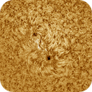 Solar chromosphere 20170329,                                Sergio Alessandrelli