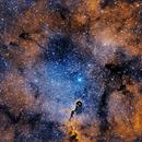 IC1396,                                Kenneth Hoynes