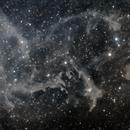 Molecular Clouds in Cepheus, LBN 552 an LDN 1228,                                Steven Bellavia