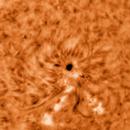 Sun spot in Ha,                                Miroslav Kalinaj