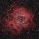 NGC2244 Rosettennebel,                                Marcus Jungwirth