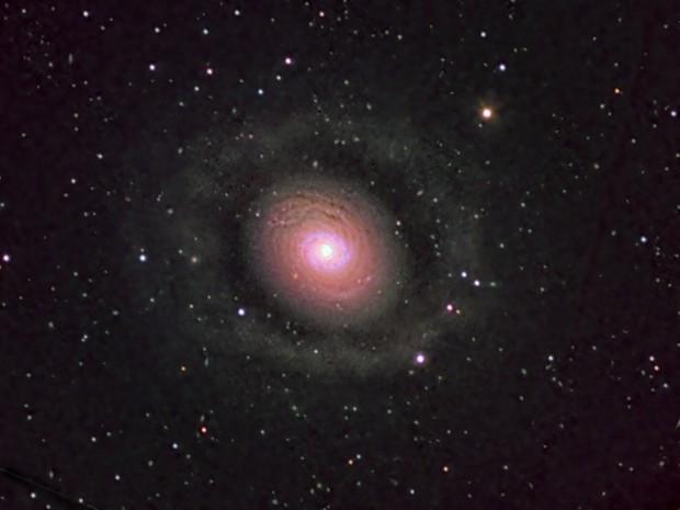 Messier 94: The Cat's Eye,                                David Redwine