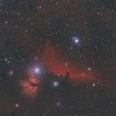 Nebulosa Testa di Cavallo (Horsehead)  ,                                Daniele Papa