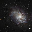 M33,                                Brian Ritchie