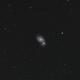 M51 The WhirlPool Galaxy,                                Elmiko