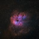 IC 410 Tadpoles Nebula - HOO,                                CitySpace Astro