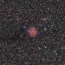 IC5146 - Cocoon Nebula,                                Felix