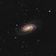 NGC2903 - Cosmic Gem in Leo,                                Nico Augustin