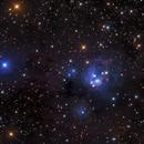 Ngc 7129 - The Rosebud Nebula,                                Salvatore Grasso