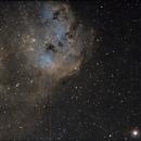 Nebulosa Tulipano,                                Beppe78