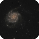 The Pinwheel Galaxy,                                Caleb Melton