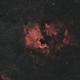 NGC 7000 and IC5070 Samyang 135mm f/2,                                Elmiko