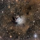 Iris Nebula,                                Jeff Donaldson