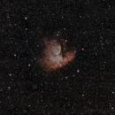 NGC281 - Pacman,                                ZlochTeamAstro