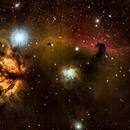 Horsehead Nebula,                                Bill Dally