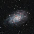 M33 - Triangulum Galaxy,                                Dennis Sprinkle