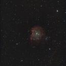 The Monkeyhead Nebula,                                Emilio Zandarin