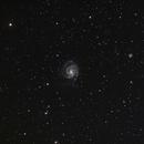 Pinwheel Galaxy (M101) Wide Field of View,                                Mike Missler
