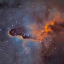 Elephant's Trunk Nebula,                                Vasile Unguru