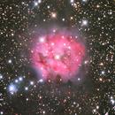 IC 5146 Cocoon Nebula,                                Trey W