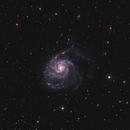Pinwheel Galaxy,                                Nikita Misiura