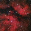 IC1218 Around Sadr star,                                Giovanni Paglioli