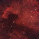 NGC 7000 - North America Nebula Wide Field,                                Timothy Martin & Nic Patridge