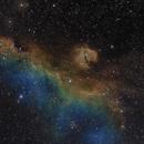 Seagull Nebula,                                Pawel Zgrzebnicki