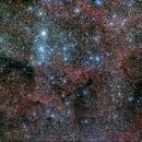 NGC6871 und Umgebung,                                Peter Kraus