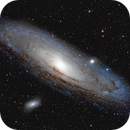 M31 ANDROMEDA GALAXY,                                Wes Higgins