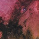 NGC7000 North America Nebula and IC5070 Pelican Nebula,                                Luís Ramalho