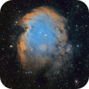 NGC2174 Monkeyhead Nebula,                                Hartmuth Kintzel