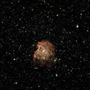 Monkey Head Nebula (uncropped),                                Scott Homstead