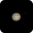 Jupiter with IO, Europa and IO Shadow Transit,                                Dave
