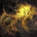 A Mighty Roar in the Heavens: The Lion Nebula (SHO),                                Glenn C Newell