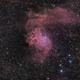 Flaming Star Nebula - QHY163 - Esprit 80 - HA S2 O3,                                Eric Walden